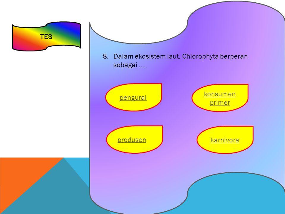 TES 8.Dalam ekosistem laut, Chlorophyta berperan sebagai …. konsumen primer pengurai karnivora produsen