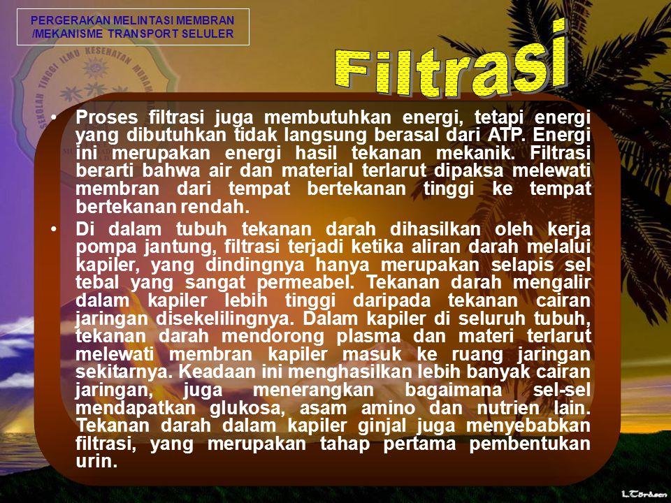 Proses filtrasi juga membutuhkan energi, tetapi energi yang dibutuhkan tidak langsung berasal dari ATP.