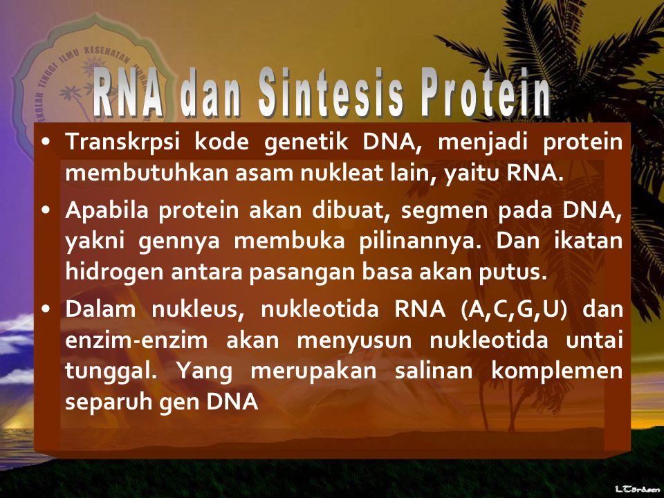 Transkrpsi kode genetik DNA, menjadi protein membutuhkan asam nukleat lain, yaitu RNA.