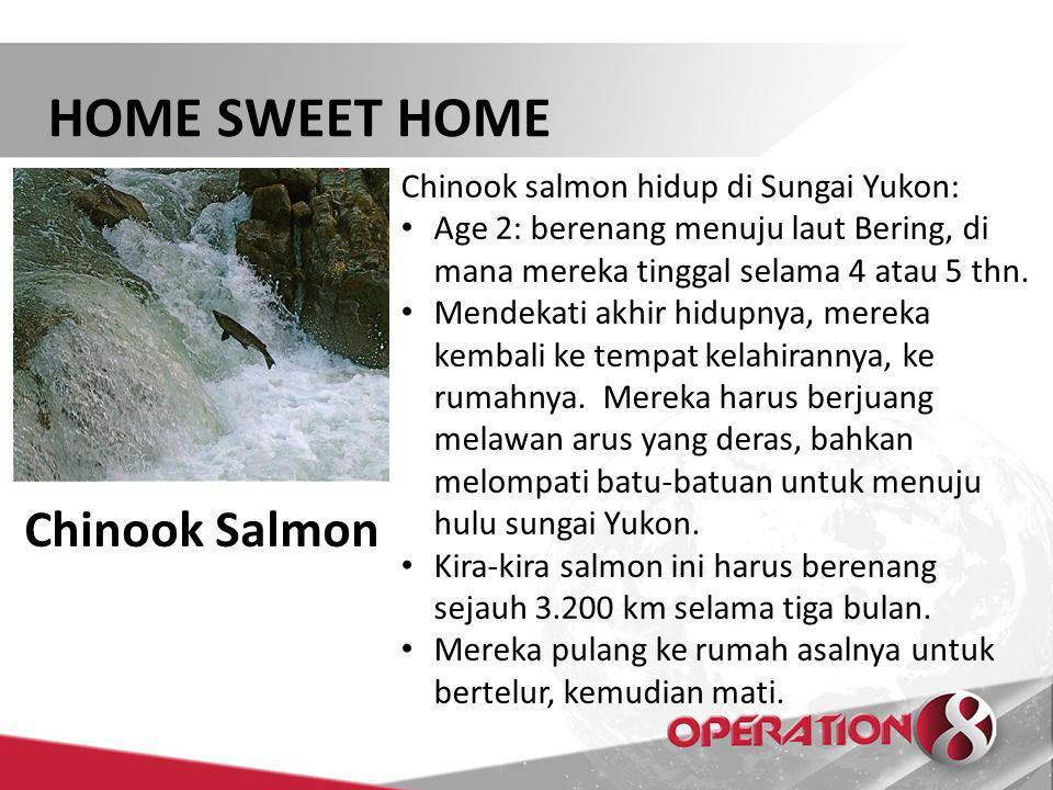 HOME SWEET HOME Habitation - A dwelling place