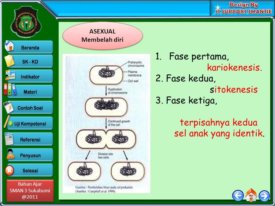 Bahan Ajar SMAN 3 Sukabumi @2011 Bahan Ajar SMAN 3 Sukabumi @2011 ASEXUAL Membelah diri ASEXUAL Membelah diri 1.Fase pertama, kariokenesis. 2. Fase ke