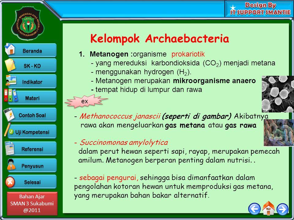 Bahan Ajar SMAN 3 Sukabumi @2011 Bahan Ajar SMAN 3 Sukabumi @2011 Kelompok Archaebacteria 1.Metanogen :organisme prokariotik - yang mereduksi karbondi