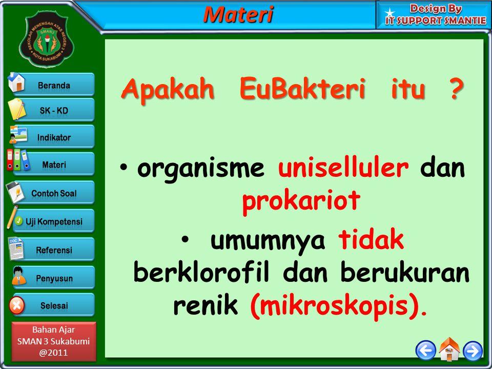 Bahan Ajar SMAN 3 Sukabumi @2011 Bahan Ajar SMAN 3 Sukabumi @2011 Hidup bebas atau parasit Thiomargarita.