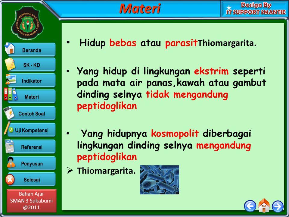 Bahan Ajar SMAN 3 Sukabumi @2011 Bahan Ajar SMAN 3 Sukabumi @2011 Struktur dasar bakteri : 1.