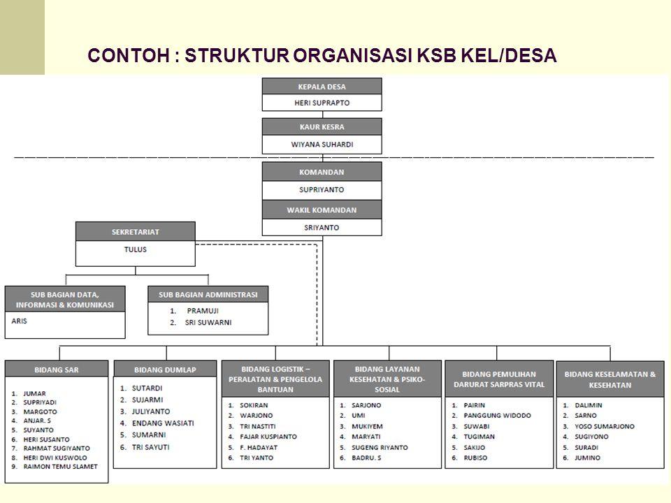 CONTOH : STRUKTUR ORGANISASI KSB KEL/DESA