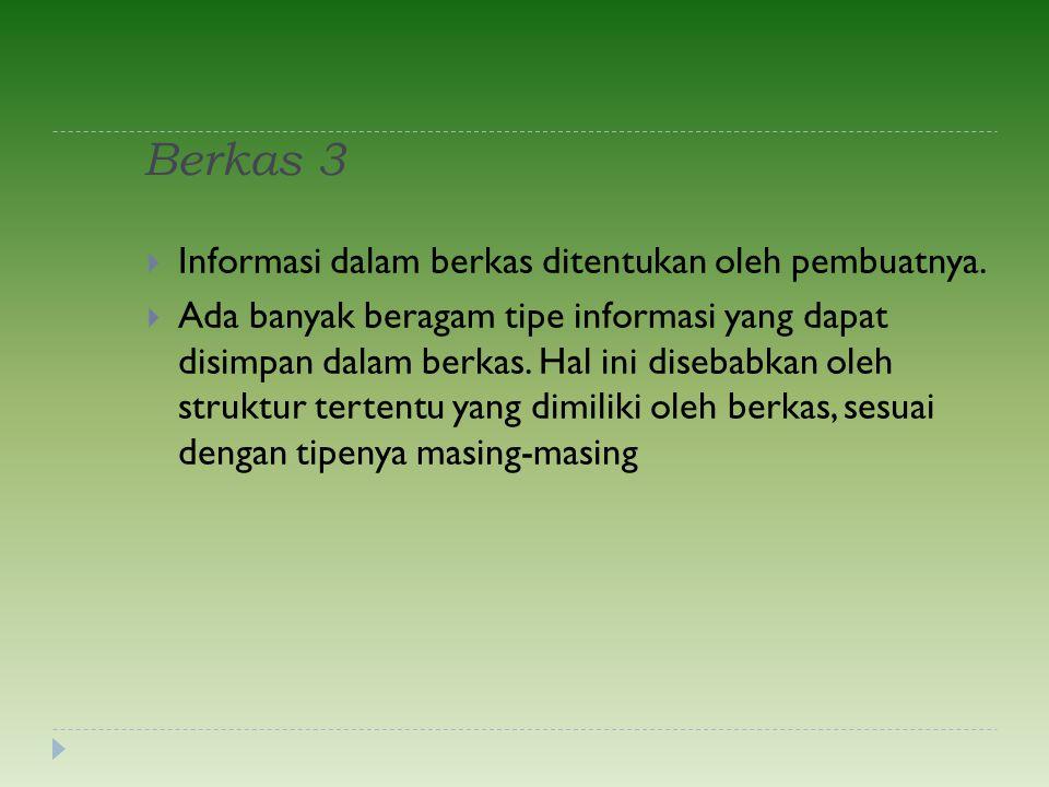 Berkas 3  Informasi dalam berkas ditentukan oleh pembuatnya.  Ada banyak beragam tipe informasi yang dapat disimpan dalam berkas. Hal ini disebabkan