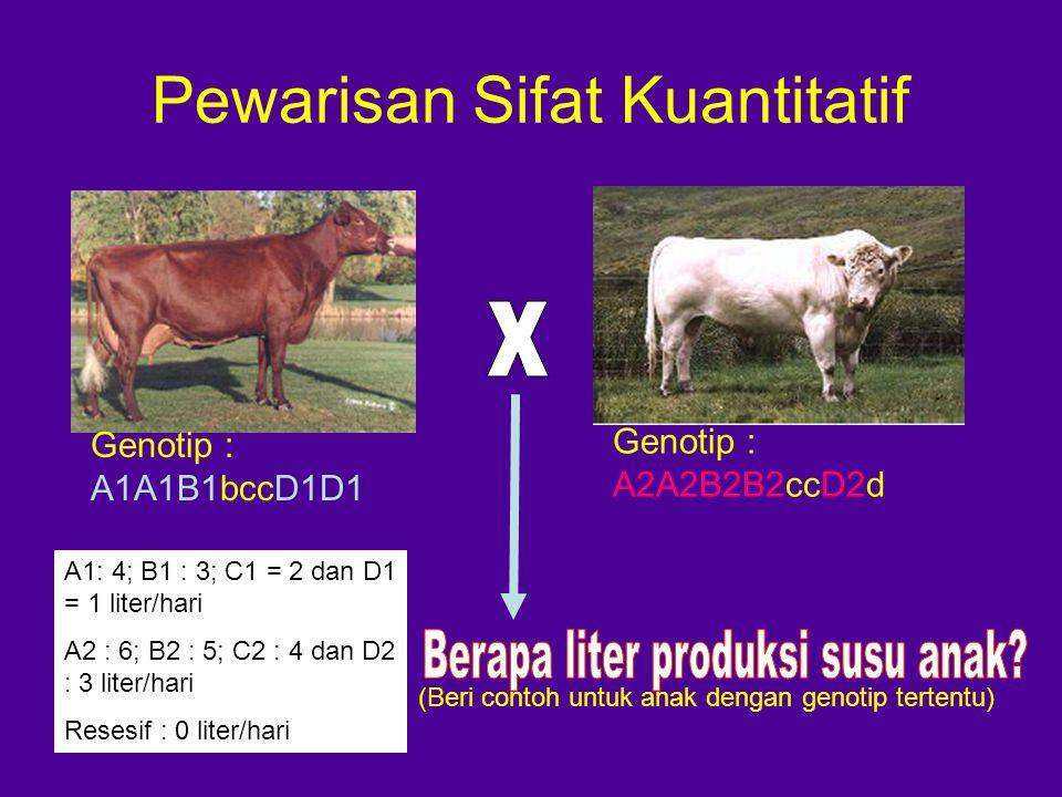Pewarisan Sifat Kuantitatif Genotip : A1A1B1bccD1D1 Genotip : A2A2B2B2ccD2d A1: 4; B1 : 3; C1 = 2 dan D1 = 1 liter/hari A2 : 6; B2 : 5; C2 : 4 dan D2