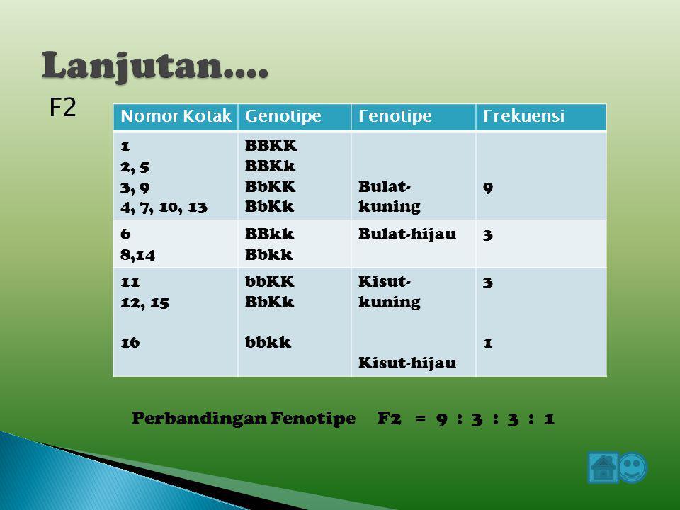 BKBkbKbk BKBBKK 1 BBKk 2 BbKK 3 BbKk 4 BkBBKk 5 BBkk 6 BbKk 7 Bbkk 8 bKBbKK 9 BbKk 10 bbKK 11 bbKk 12 bkBbKk 13 Bbkk 14 bbKk 15 bbkk 16