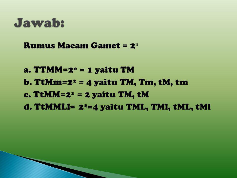 Tentukan macam-macam gamet individu berikut: a.TTMM b.TtMm c.TtMM d.TtMMLl