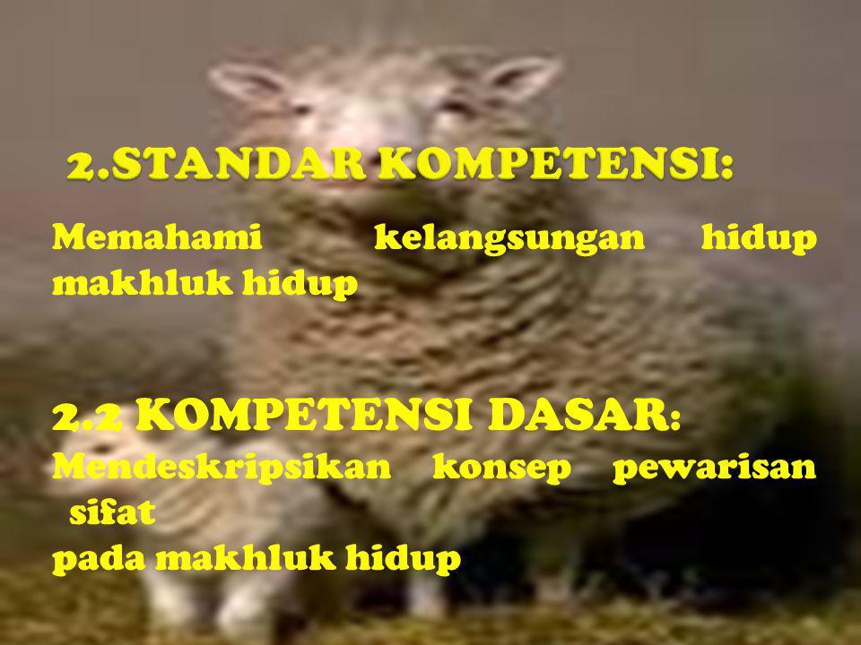 P1:BBKK x bbkk Fenotipe: (bulat-kuning) (kisut-hijau) Gamet: BK x bk F1: BbKk Fenotipe: (bulat-kuning)