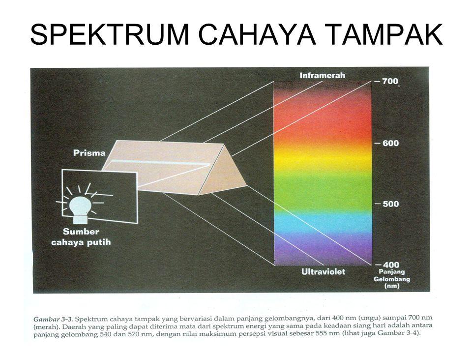 SPEKTRUM CAHAYA TAMPAK