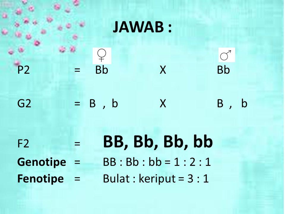 BY LILI ANDAJANI, M.Pd JAWAB : P2= BbXBb G2= B, bXB, b F2= BB, Bb, Bb, bb Genotipe =BB : Bb : bb = 1 : 2 : 1 Fenotipe =Bulat : keriput = 3 : 1