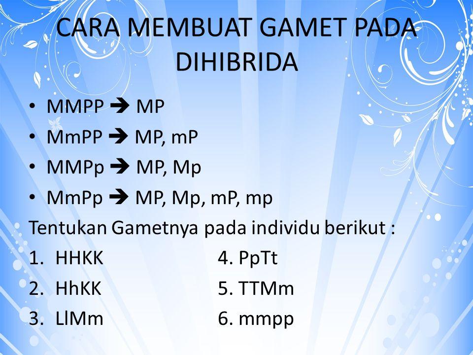 BY LILI ANDAJANI, M.Pd CARA MEMBUAT GAMET PADA DIHIBRIDA MMPP  MP MmPP  MP, mP MMPp  MP, Mp MmPp  MP, Mp, mP, mp Tentukan Gametnya pada individu b