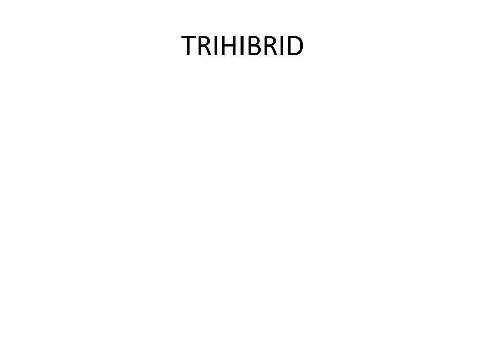 TRIHIBRID