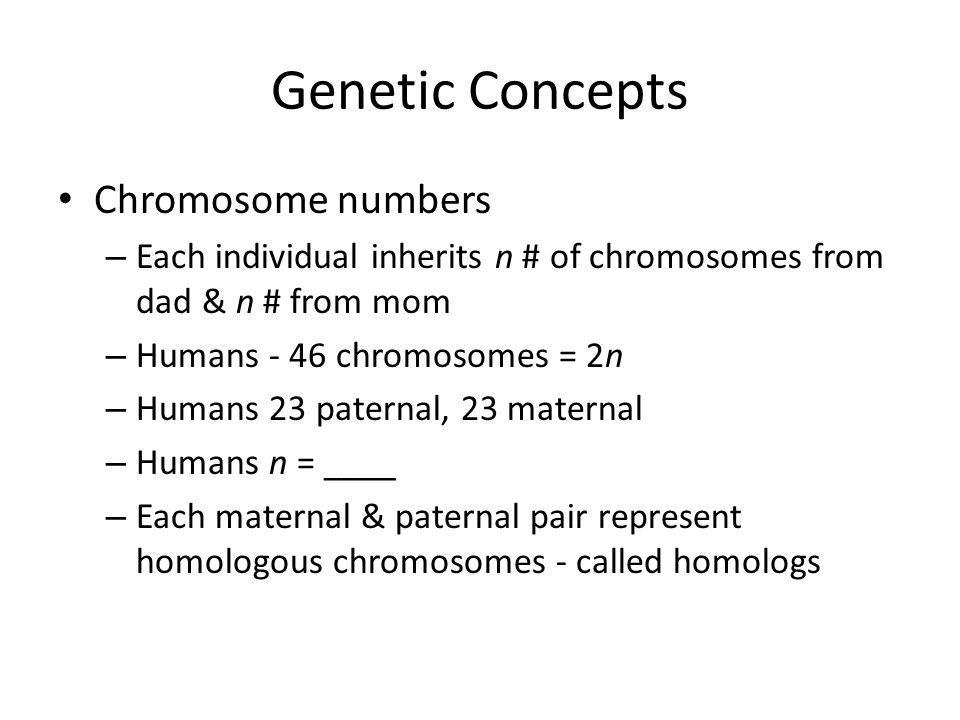 Chromosome numbers – Each individual inherits n # of chromosomes from dad & n # from mom – Humans - 46 chromosomes = 2n – Humans 23 paternal, 23 mater