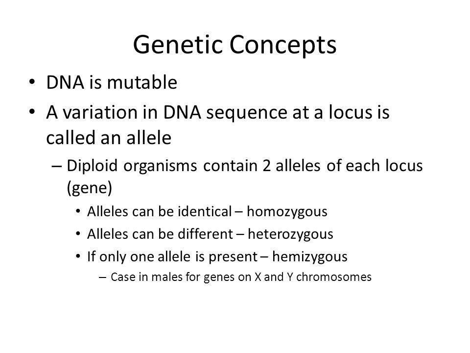 Genetic Concepts DNA is mutable A variation in DNA sequence at a locus is called an allele – Diploid organisms contain 2 alleles of each locus (gene)