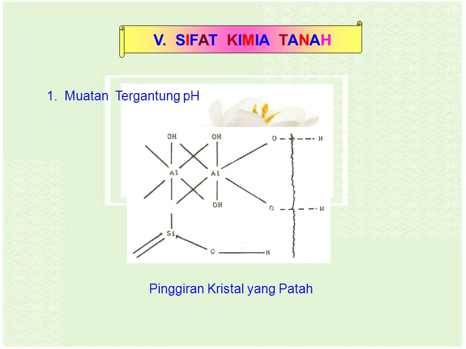 V. SIFAT KIMIA TANAH 1. Muatan Tergantung pH Pinggiran Kristal yang Patah
