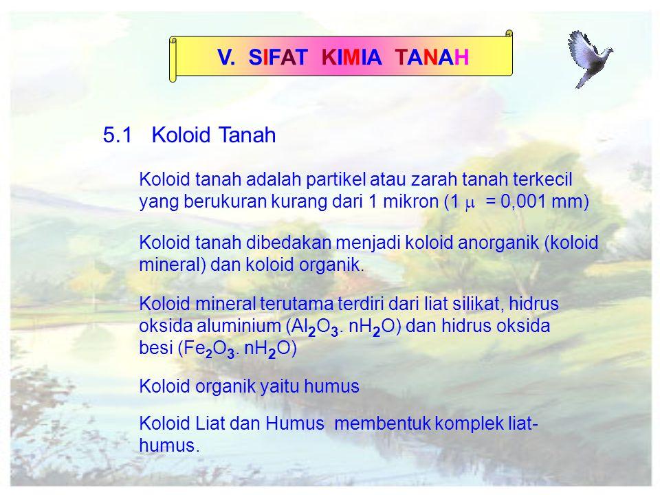 V.SIFAT KIMIA TANAH 2.