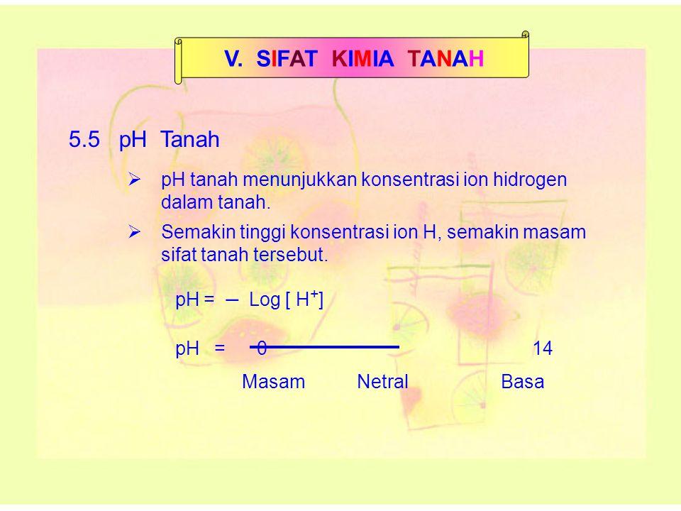 V. SIFAT KIMIA TANAH 5.5 pH Tanah pH = – Log [ H + ]  pH tanah menunjukkan konsentrasi ion hidrogen dalam tanah.  Semakin tinggi konsentrasi ion H,
