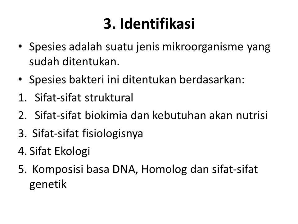 3. Identifikasi Spesies adalah suatu jenis mikroorganisme yang sudah ditentukan. Spesies bakteri ini ditentukan berdasarkan: 1.Sifat-sifat struktural