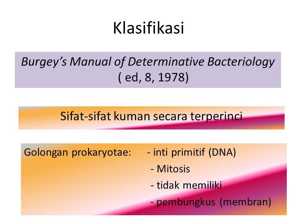 Golongan Prokaryotae Bersel tunggal (uniseluller) Eubacteria (bakteri sejati) Yang patogen pada manusia Archeobacteria (bakteri purba)