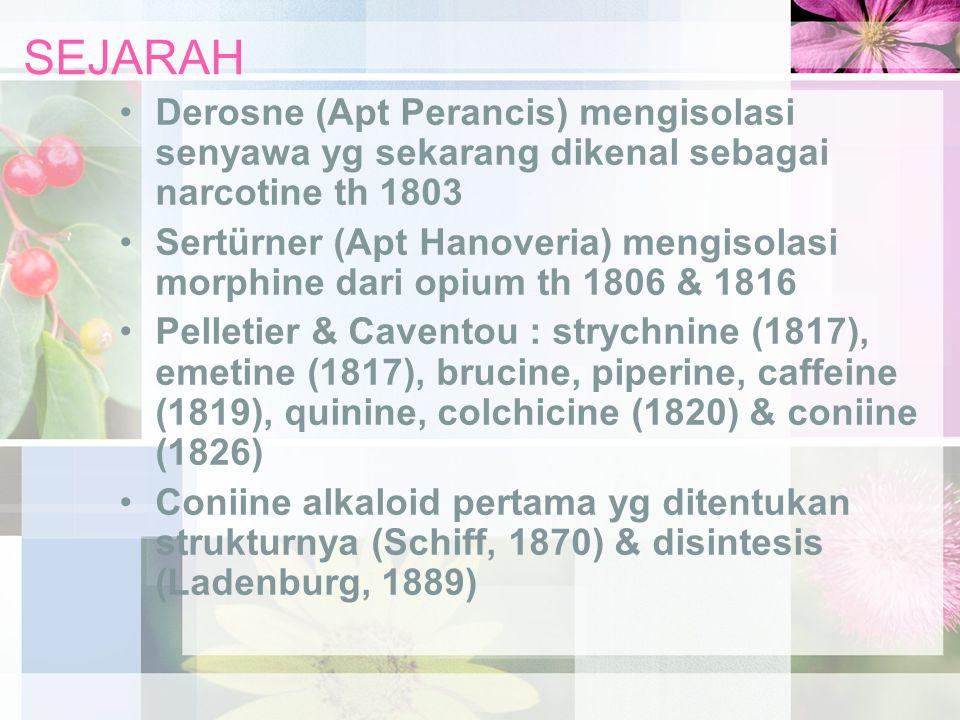 SEJARAH Derosne (Apt Perancis) mengisolasi senyawa yg sekarang dikenal sebagai narcotine th 1803 Sertürner (Apt Hanoveria) mengisolasi morphine dari o
