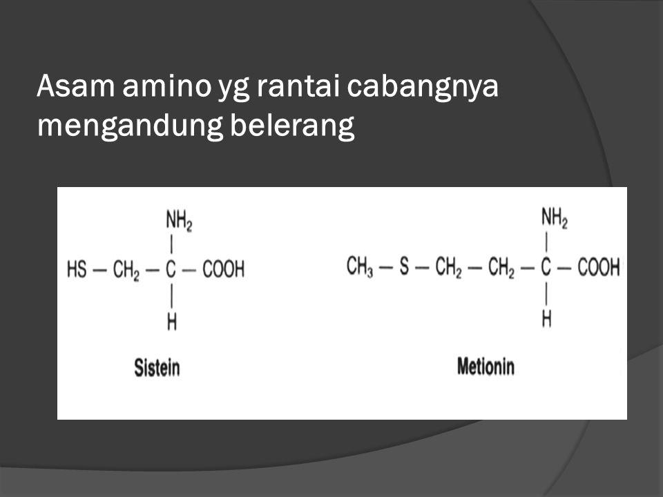 Asam amino yg rantai cabangnya mengandung belerang