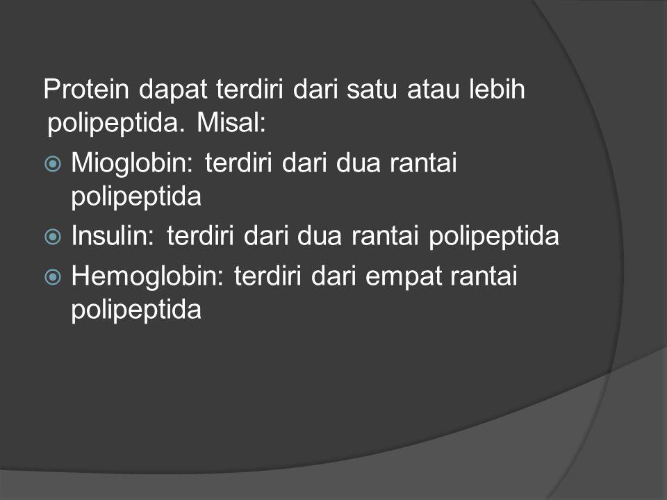 Protein dapat terdiri dari satu atau lebih polipeptida.