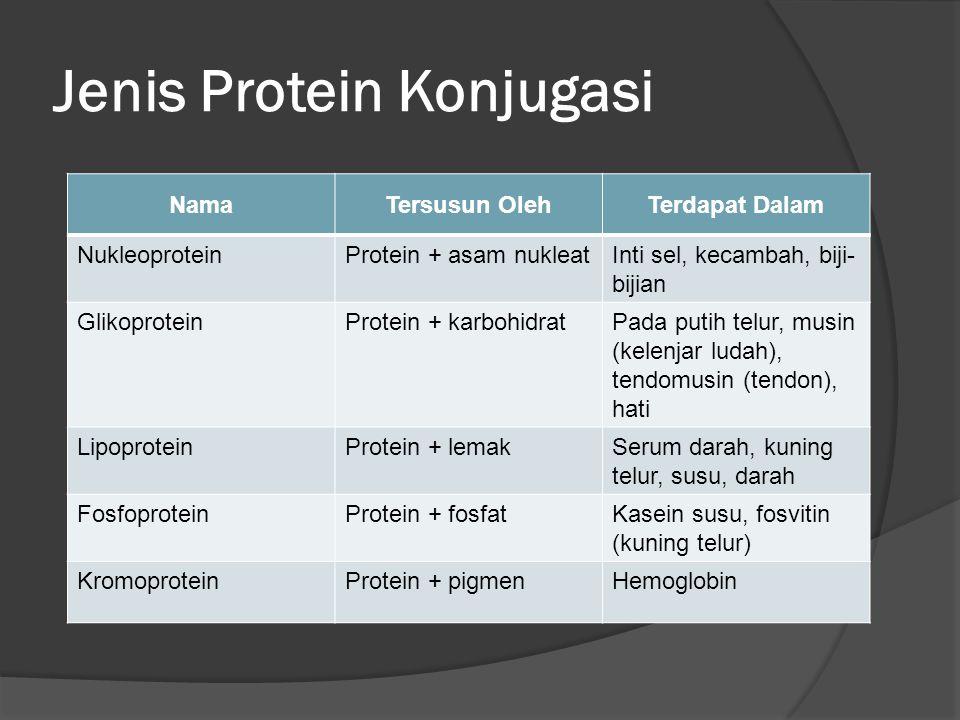 Jenis Protein Konjugasi NamaTersusun OlehTerdapat Dalam NukleoproteinProtein + asam nukleatInti sel, kecambah, biji- bijian GlikoproteinProtein + karbohidratPada putih telur, musin (kelenjar ludah), tendomusin (tendon), hati LipoproteinProtein + lemakSerum darah, kuning telur, susu, darah FosfoproteinProtein + fosfatKasein susu, fosvitin (kuning telur) KromoproteinProtein + pigmenHemoglobin