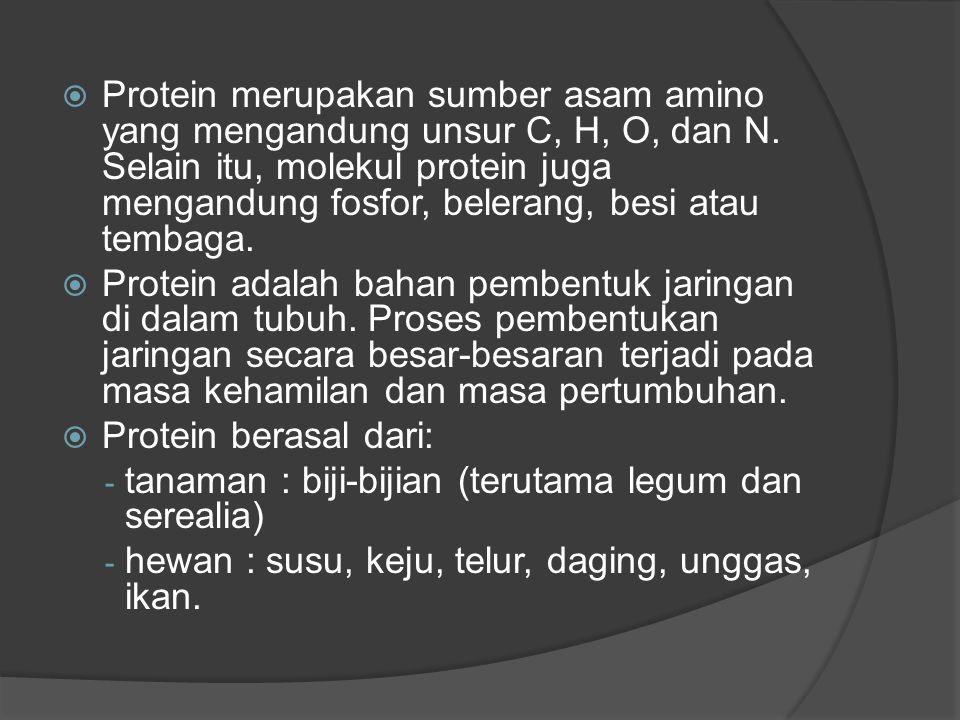 Protein merupakan sumber asam amino yang mengandung unsur C, H, O, dan N. Selain itu, molekul protein juga mengandung fosfor, belerang, besi atau te