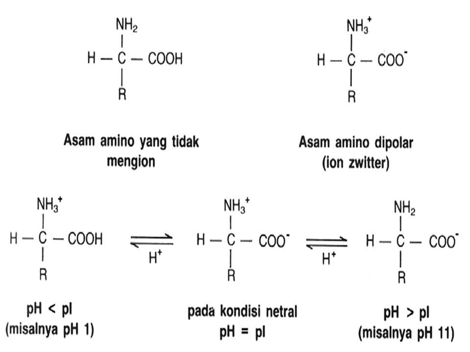 Cara Fisik  Suhu  Tekanan hidrostatis  Gaya mekanik