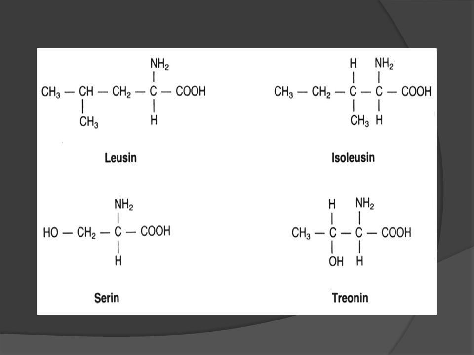 Ikatan yang mungkin dalam polipeptida/protein
