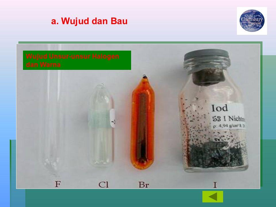 Wujud Unsur-unsur Halogen dan Warna a. Wujud dan Bau