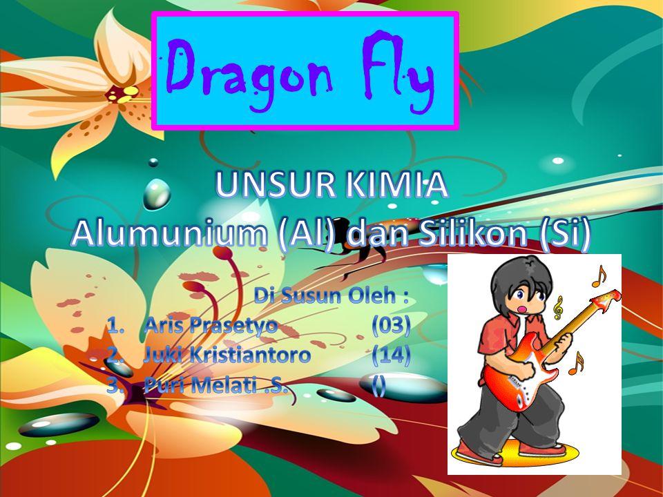 Dragon Fly Kegunaan Silikon (Si) Silikon murni banyak digunakan sebagai bahan pembuatan semi konduktor untuk barang barang elektronik, Silika gel biasa digunakan untuk menyerap air pada peralatan kamera dan obat-obatan karena sifatnya yang higroskopis.