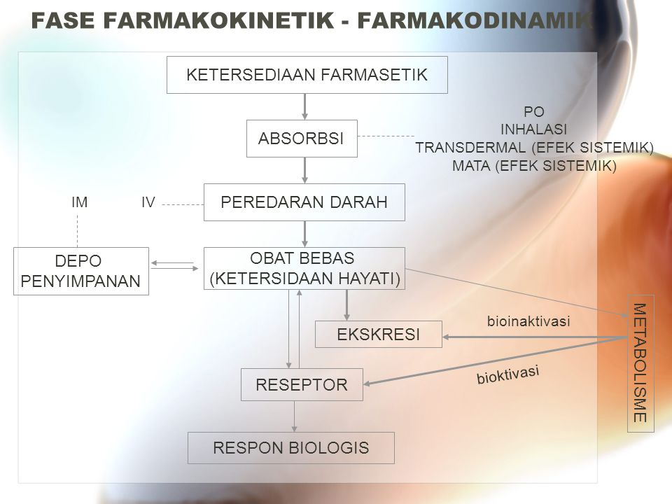 FASE FARMAKOKINETIK - FARMAKODINAMIK KETERSEDIAAN FARMASETIK ABSORBSI PO INHALASI TRANSDERMAL (EFEK SISTEMIK) MATA (EFEK SISTEMIK) PEREDARAN DARAH OBA