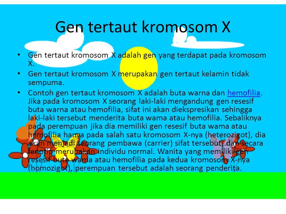 Tautan kelamin Gen tertaut kelamin (sex linked genes) adalah gen yang terletak pada kromosom kelamin dan sifat yang ditimbulkan gen pada kromosom ini diturunkan bersama dengan jenis kelamin.