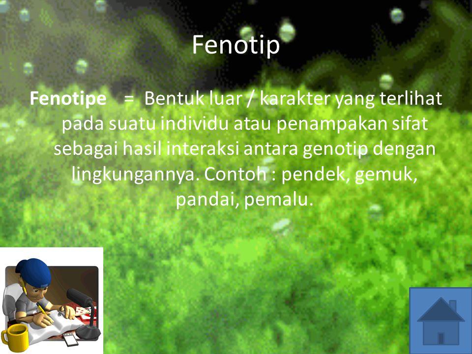 Genotip Genotipe adalah bentuk atau susunan gen (karakter) yang terdapat dalam individu yang dilambangkan/dikodekan. Contohnya: bunga merah ditulis M.