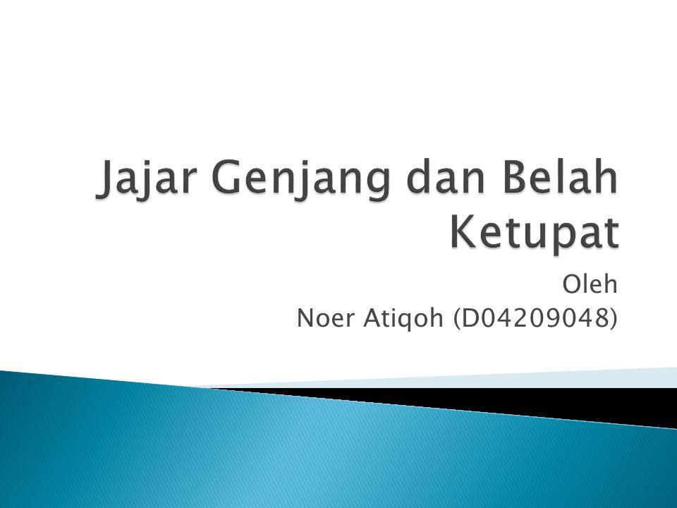 Oleh Noer Atiqoh (D04209048)