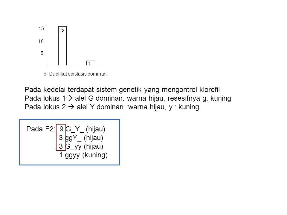 5 10 15 1 d. Duplikat epistasis dominan Pada kedelai terdapat sistem genetik yang mengontrol klorofil Pada lokus 1  alel G dominan: warna hijau, rese