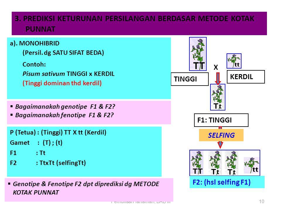 Pemuliaan Tanaman, BAB III10 3. PREDIKSI KETURUNAN PERSILANGAN BERDASAR METODE KOTAK PUNNAT TINGGI KERDIL F1: TINGGI X SELFING a). MONOHIBRID (Persil.
