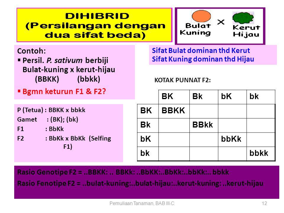 Pemuliaan Tanaman, BAB III-C12 Contoh:  Persil. P. sativum berbiji Bulat-kuning x kerut-hijau (BBKK) (bbkk)  Bgmn keturun F1 & F2? BKBkbKbk BKBBKK B