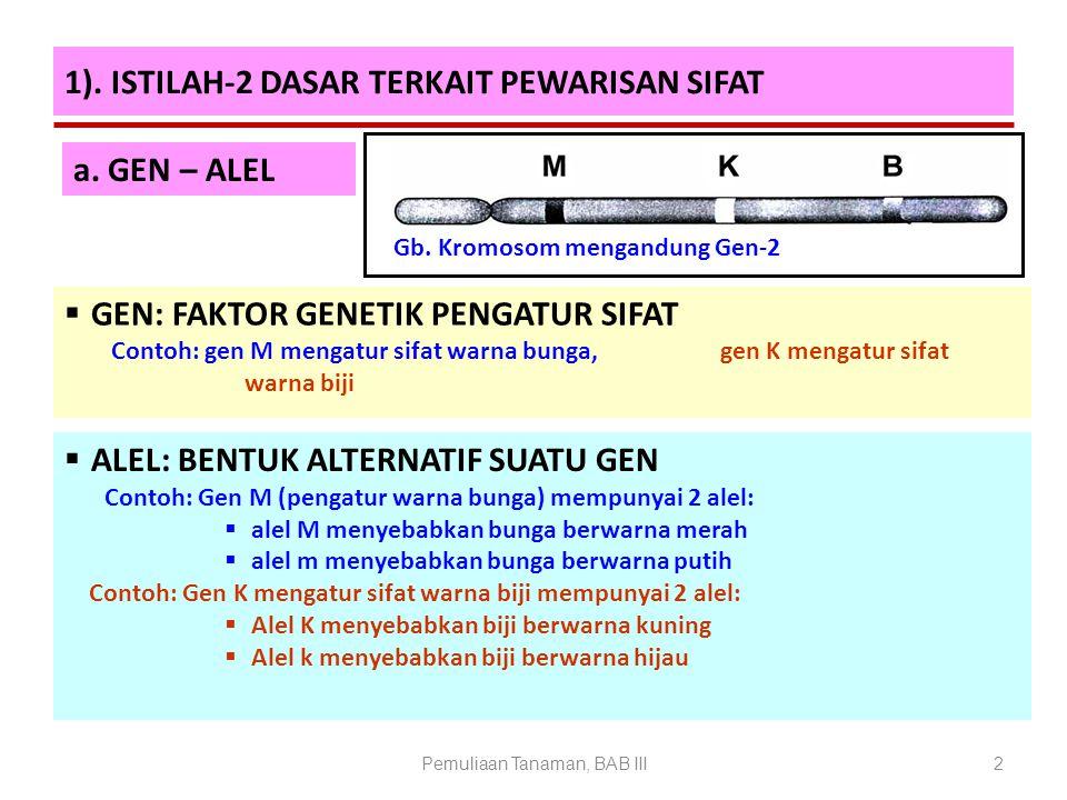 Pemuliaan Tanaman, BAB III2 1). ISTILAH-2 DASAR TERKAIT PEWARISAN SIFAT  ALEL: BENTUK ALTERNATIF SUATU GEN Contoh: Gen M (pengatur warna bunga) mempu