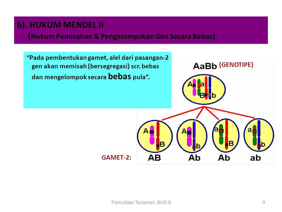 DNA: Polinukleotida (Gabungan mononukelotida-2) MONONUKLEOTIDA