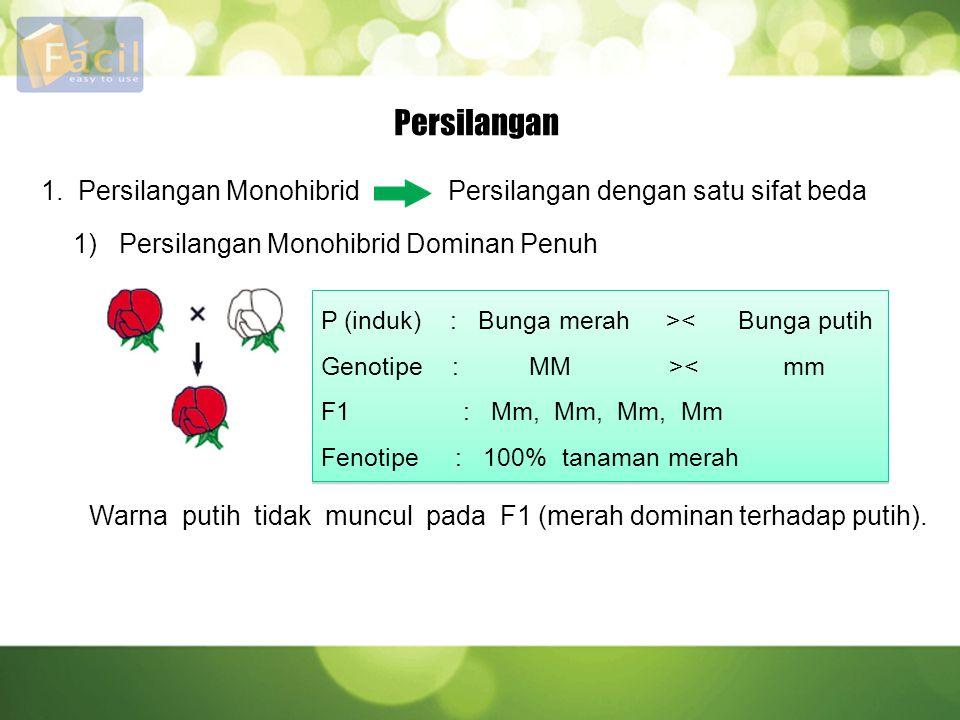 Persilangan 1. Persilangan Monohibrid Persilangan dengan satu sifat beda 1) Persilangan Monohibrid Dominan Penuh P (induk) : Bunga merah >< Bunga puti