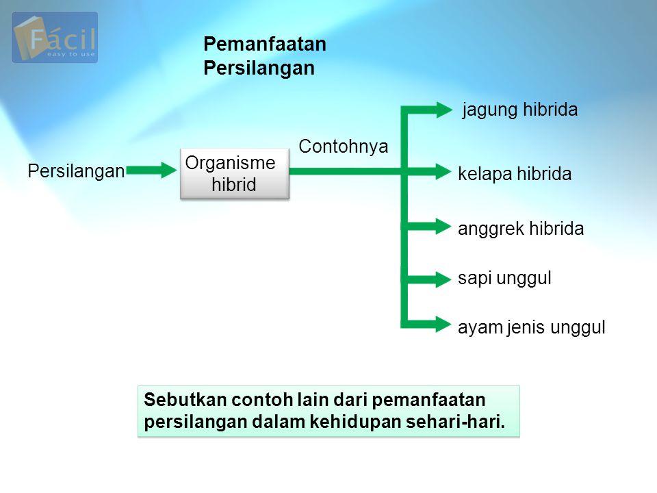 Pemanfaatan Persilangan Persilangan jagung hibrida kelapa hibrida anggrek hibrida sapi unggul ayam jenis unggul Sebutkan contoh lain dari pemanfaatan