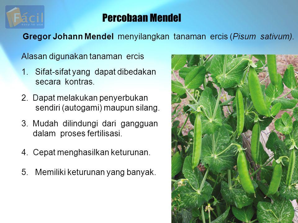 Percobaan Mendel Gregor Johann Mendel menyilangkan tanaman ercis (Pisum sativum). Alasan digunakan tanaman ercis 1. Sifat-sifat yang dapat dibedakan s