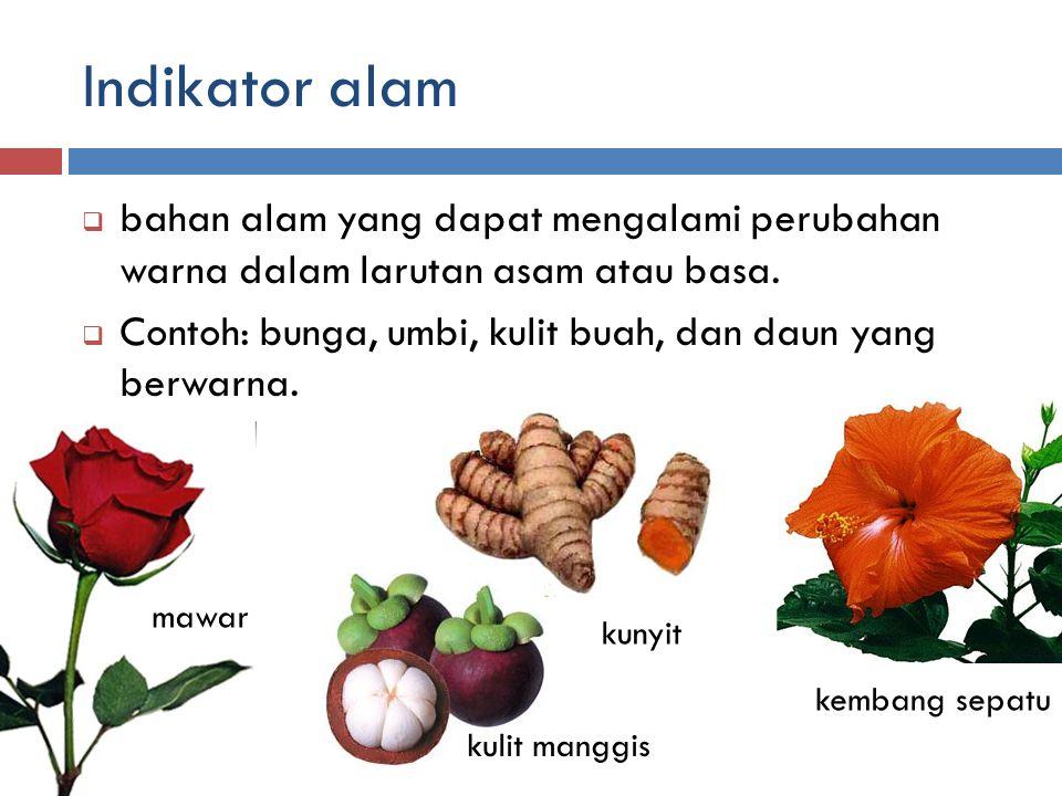 Indikator alam  bahan alam yang dapat mengalami perubahan warna dalam larutan asam atau basa.  Contoh: bunga, umbi, kulit buah, dan daun yang berwar