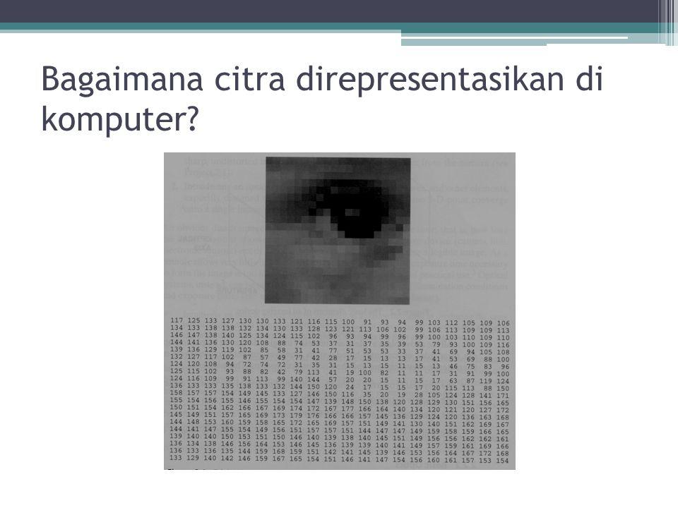 Bagaimana citra direpresentasikan di komputer?