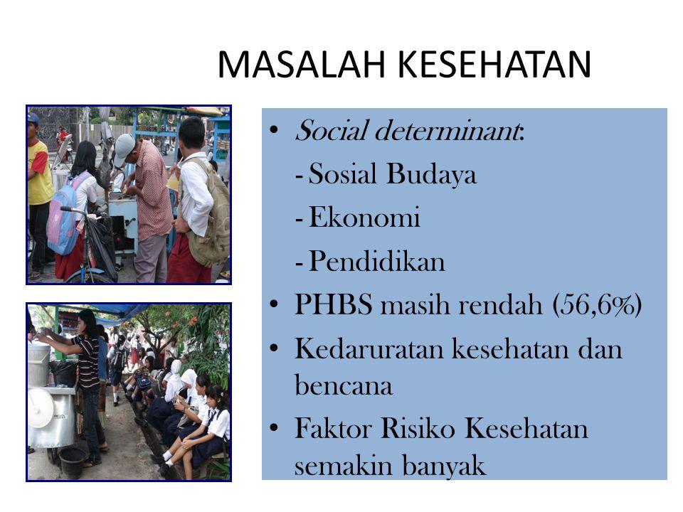 MASALAH KESEHATAN Social determinant: -Sosial Budaya -Ekonomi -Pendidikan PHBS masih rendah (56,6%) Kedaruratan kesehatan dan bencana Faktor Risiko Ke