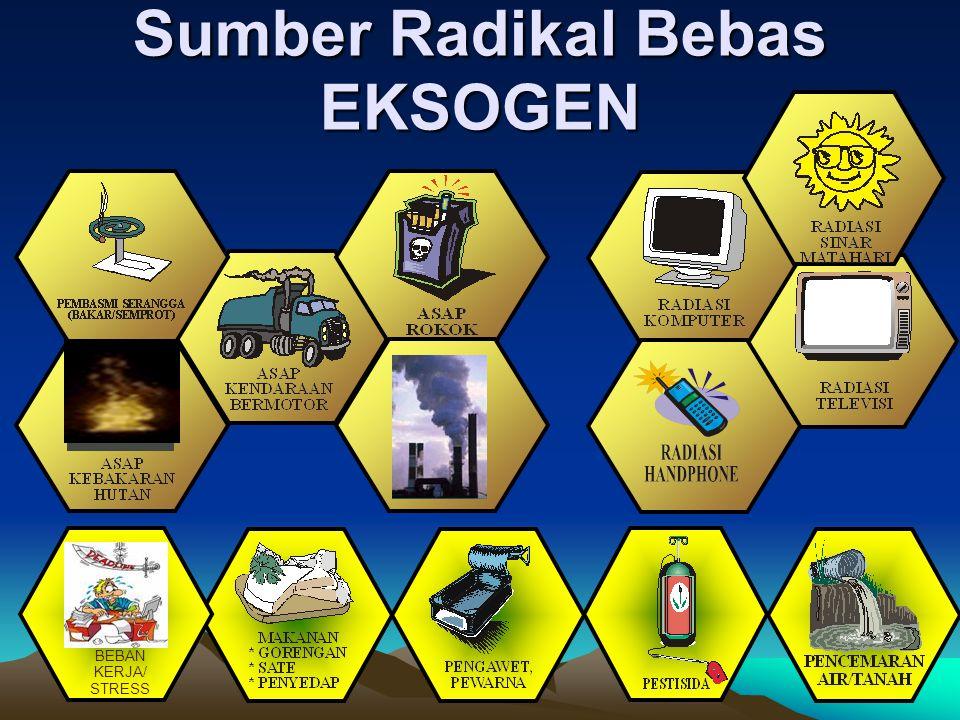Sumber Radikal Bebas ENDOGEN Sisa Metabolisme Tubuh Racun/sisa penghancuran benda asing/sel